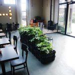 Nieuwe hotspots op Rotsoord in Utrecht