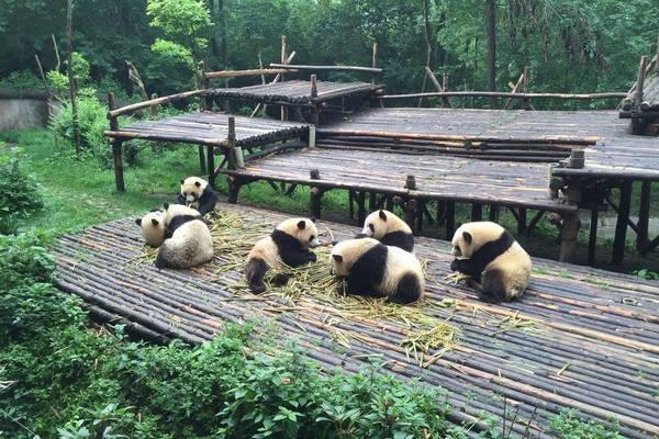 Vakantie China plannen