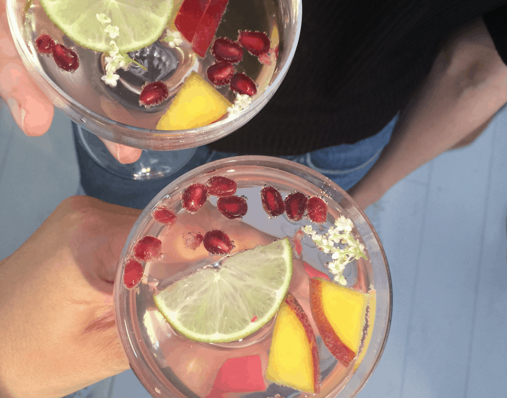 Health by Hanneke gin tonic