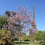 Le Perchoir heeft het mooiste uitzicht van Parijs