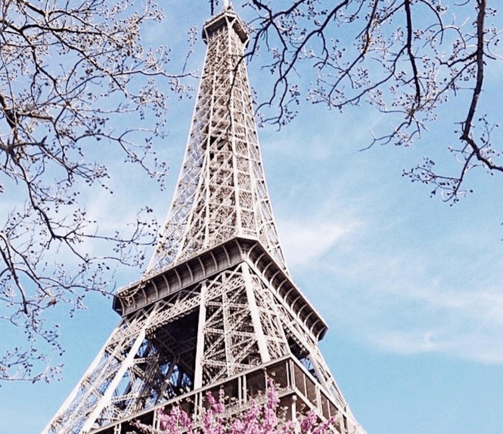 Parijs eiffeltoren cherry blossom
