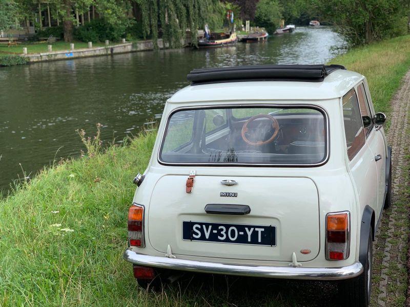 close-up achterkant Mini-Cooper